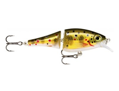 BX Jointed Shad 6 cm TR